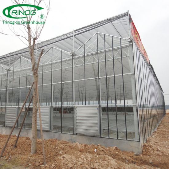 European Style Commercial used glass Greenhouse for farm