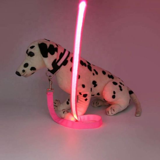 Pet Glow Rope, Glow Multi-Function Buckle Dog Leash, Strap Rope, Pet Belt Light up in Dark - Pink/Pet Toy/Dog Harness