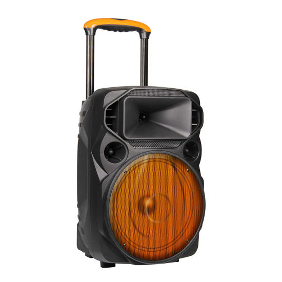 Private 15 Inch Party Super Bass DJ Bluetooth Trolley Speaker