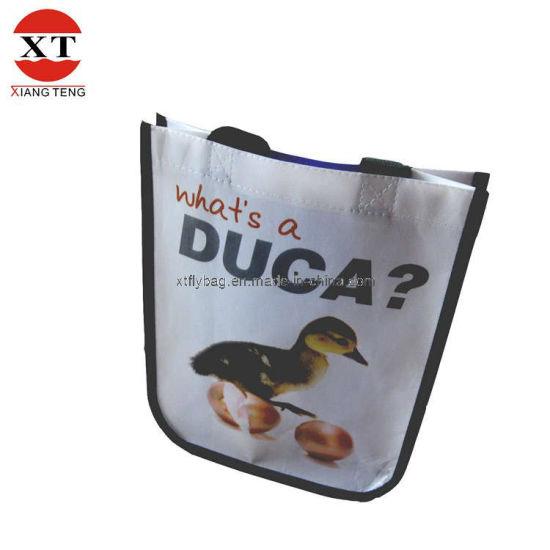 Metallic Lamination Advertising Shopping Bag (FLY-FM10)