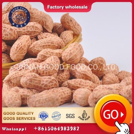 High Quality Peanut and Groundnut Without Shell Peanut pictures & photos