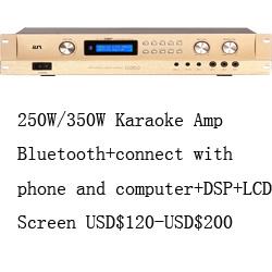 China 250W Professional Sound Digital Power Amplifier D250 - China