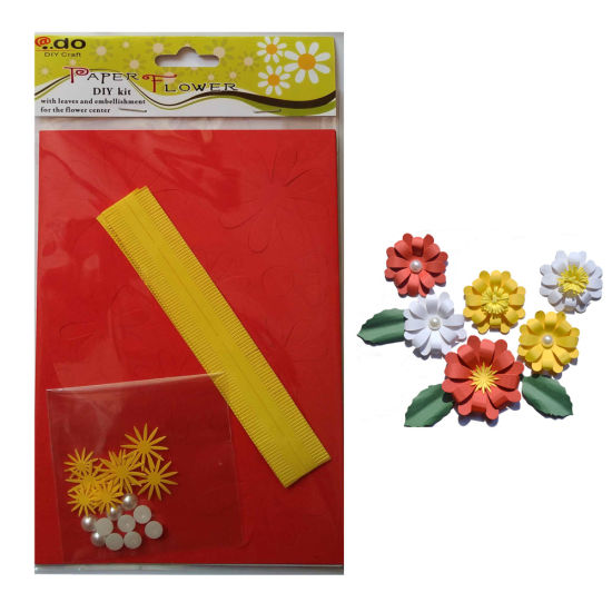 Paper Flower DIY Handmade Material Kit of Heronsbill pictures & photos