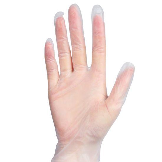 Plastic SGS Approved Powder Free Vinyl PVC Examination Gloves