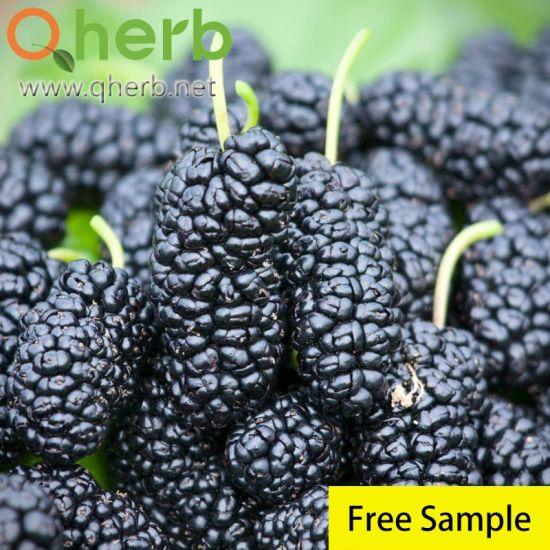 Mulberry Anthocyanin