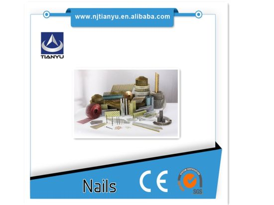 All Type and Sizes of Steel Nails pictures & photos