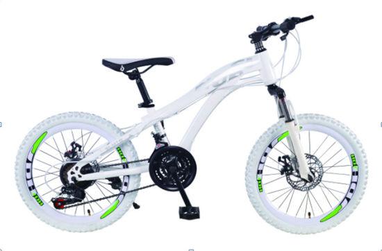 China Hot 7speed Suspension Fork Disc Brake Bicycle BMX (SL
