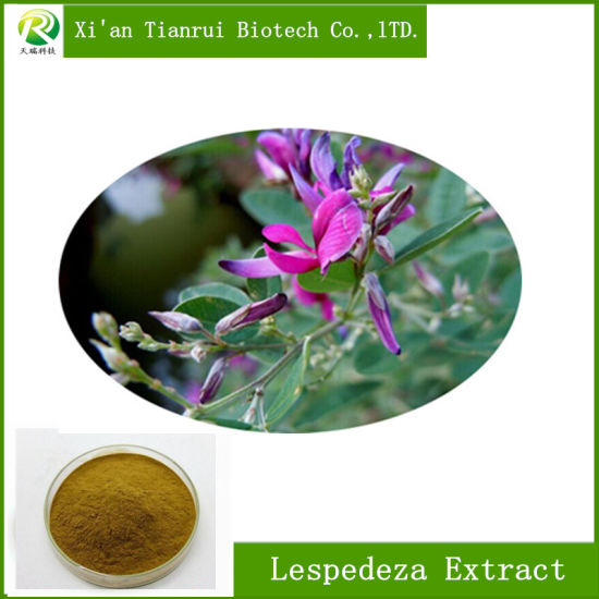 Factory Supply Hot Sell Lespedeza Extract for Anticancer pictures & photos
