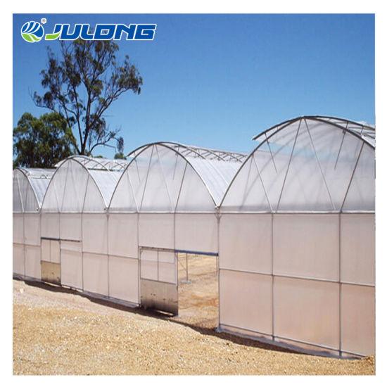 Tomato Hydroponic Greenhouse Multi Span Plastic Film Green House with Fertilizer Machine