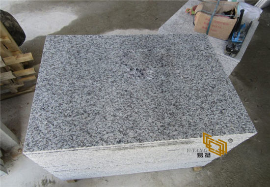 High Polished Chinese Grey/White/Brown Granite Stone Supplier for Flooring/Tiles/Kitchen