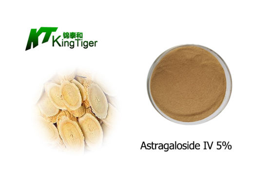 Factory Supply Enhancing Immunity Astragalus Membranaceus Extract 5% Astragaloside IV