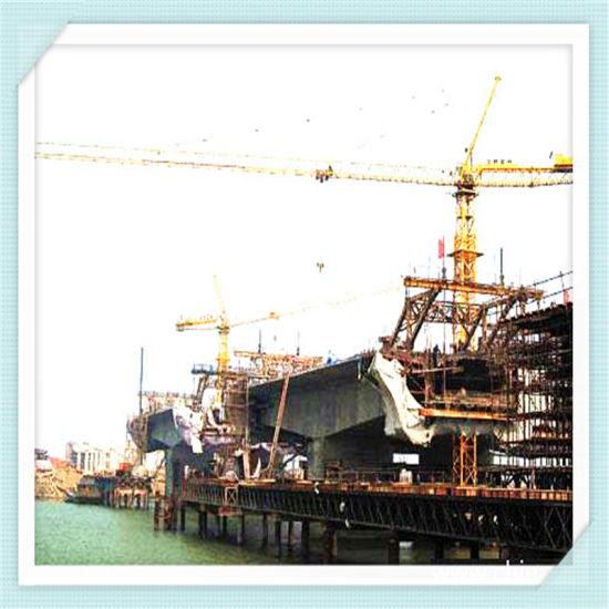 China Tower Crane Manufacturer Qtz63 (TC5010)