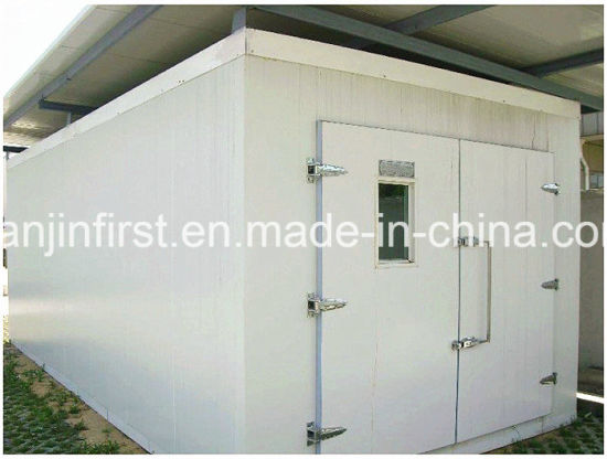 Cold Room/ Cold Storage for Frozen Pizza, Meat, Fish, Chicken, Vegetable pictures & photos