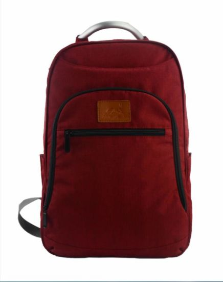Laptop Backpack Bag School Bags with Competitive Price (SB6424)