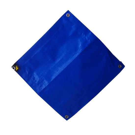 Fabric Waterproof PE Tarp with High Strength pictures & photos