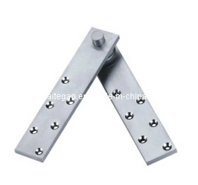 Satin Finish Stainless Steel Pivot Hinge (KTG-406) pictures & photos