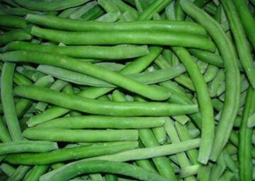 IQF Green Bean Whole Choice Quality