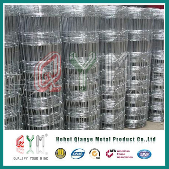 China Metal Livestock Field Farm Fence/ Chicken Wire Netting ...