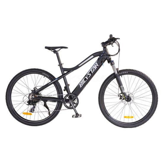 1000W 48V Fat Tire Electric Bike MID Drive1000W E Bike