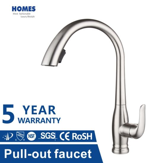 Homes SUS304 Dual Function Kitchen Tap with Pull out Sprayer Kitchen Mixer Kitchen Faucet Sanitary Ware Manufacturer