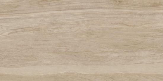 600X1200 Building Material Ceramic Full Body Absorption Less Than 0.5% Floor Tile Pm3621802p pictures & photos