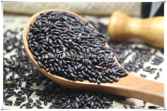 Manufacturer Natural Black Rice Extract Powder pictures & photos
