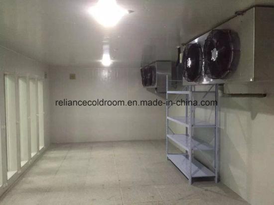China Reliance Walk in Freezer Room China Freezer Wall Panel