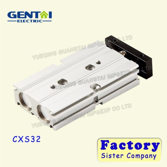 Cxs Series Double-Shaft Pneumatic Double Acting Air Cylinder