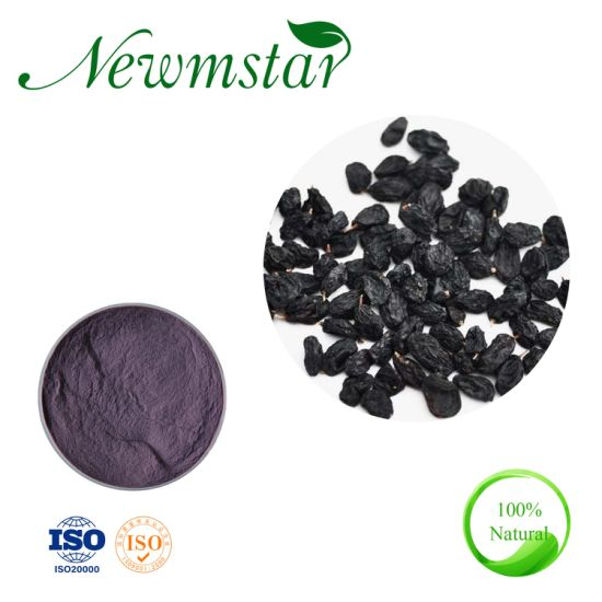Pure Natural Bulk Food Grade Black Currant Powderblackcurrant Powder Juci Powder