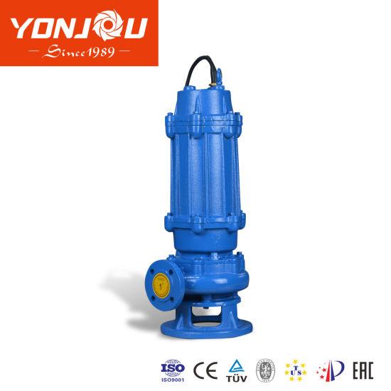 Qw Non Clogging Submersible Water Pump, Sewage Pump, Waste Water Pump