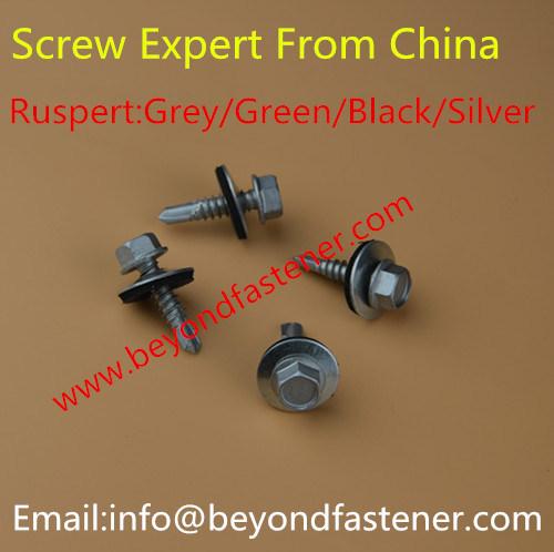 Screw/Bi-Metal Screw/Self Drilling Screw/Self Tapping Screw/Tek Screw