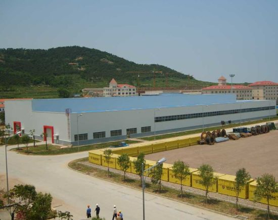 Light Steel Building for Workshop, Warehouse, Holiday Villa and College (SC-062)