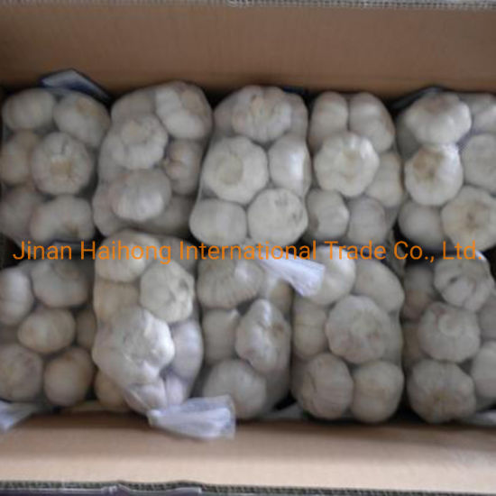 Fresh Normal White Garlic pictures & photos