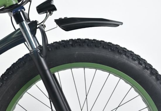 Full Suspension Mountain Electric Fat Bike pictures & photos