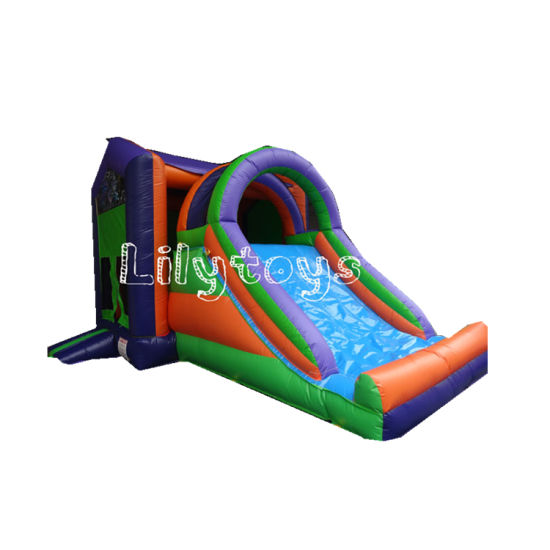 Inflatable Combo Bouncer with Slide for Family Rainbow Castle pictures & photos