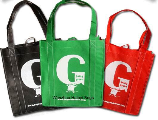 PP Non Woven Shopping Bag/Shopping Bag/Nonwoven Bag
