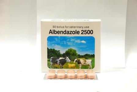 Albendazole Bolus 250mg, 300mg 600mg, 1500mg, 2500mg pictures & photos