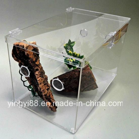 China New Acrylic Reptile Terrarium Cage Shenzhen Manufacturer