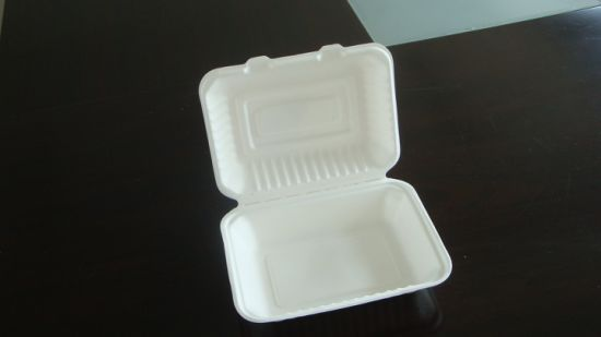 9X6X3 Composable Sugarcane Hamburger Box pictures & photos