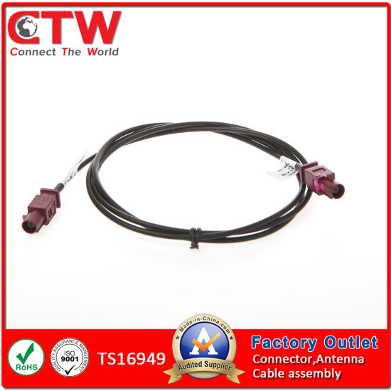Auto Double Fakra Auto Car Industry Wiring Harness/Wire Harness on