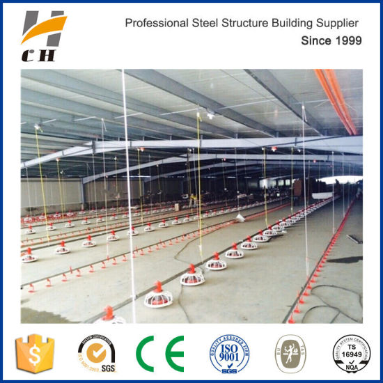 China Factory Suppliers Prefab Low Price Light Steel Structure Chicken House for Broiler Layer Chicken