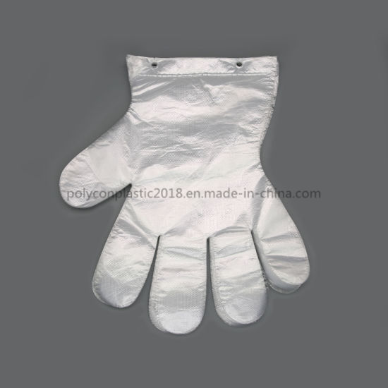 Factory Price Disposable PE Gloves