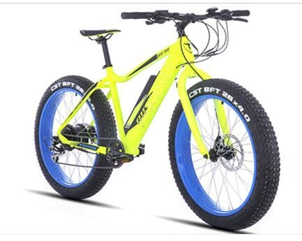 Electric Alloy Fat Tire Bike with Lithium Battery and Ba Fang Motor pictures & photos