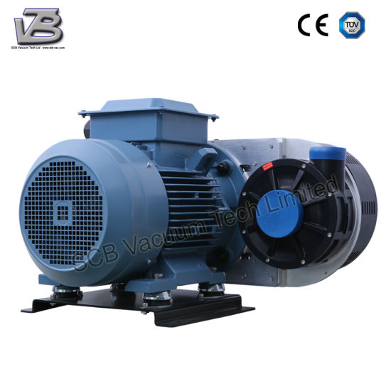 50 & 60Hz Vacuum Air Pump (Belt-driven blower) for Drying System pictures & photos