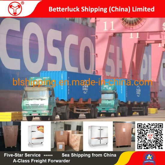 Bean Sprouts Machine Shipping from Guangzhou to Baltimore logistics service pictures & photos