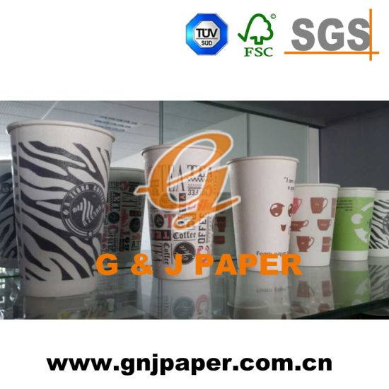 Double PE Coated Hot Paper Cup Used on Hot Drinking pictures & photos