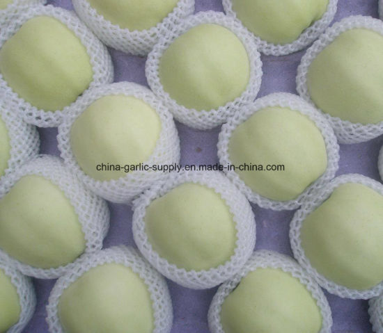 Chinese New Wholesale Fresh Green Golden Jinshuai Apple