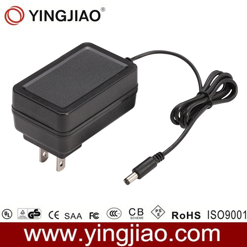 China 20W Max UL Approved Switching Power Adapter (SMPS