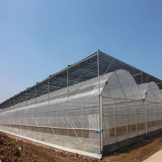 Multi-Span Arch Type PE/Po Plastic/Film Agricultural Greenhouse with Hydroponics System for Tomato/ Cucumber/ Lettuce/ Pepper Planting