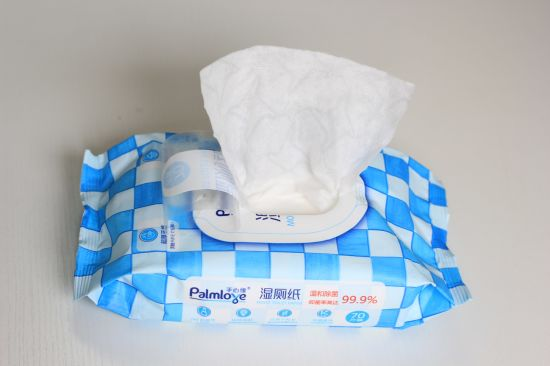 Palmlove OEM Spunlance Eco Antibacterial Adult Flushable Toilet Wet Wipes pictures & photos